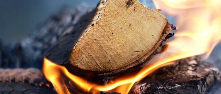 das richtige Holz für den Smoker